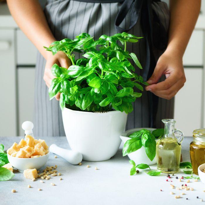 Comment faire repousser les légumes et les fines herbes au lieu de les jeter